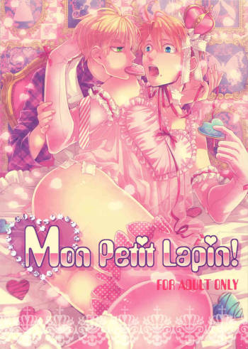 (USA5) [Frenzy (Ichi)] Mon Petit Lapin! (Axis Powers Hetalia) [English] cover