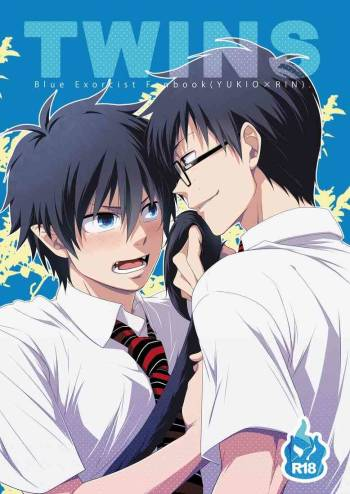 [Panda 4gou (Shima Kyousuke)] Twins (Ao no Exorcist) [English] [TnK 0] cover