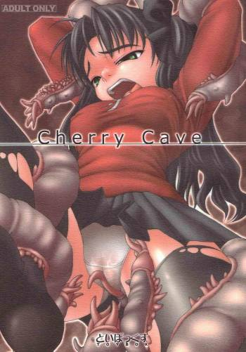 [TOYBOX (Jacky)] Cherry Cave (Fate/stay night) cover