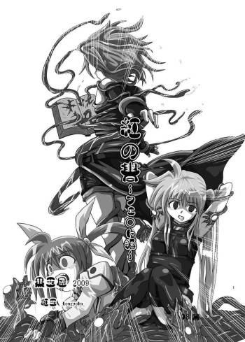 [Kurodama-ya (Akadama)] Kurenai no Syo -Fate hen- | The Crimson Book ~Fate side~ (Mahou Shoujo Lyrical Nanoha) [English] [desudesu] cover