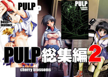 [Pretty Dolls] PULP Soushuuhen 2 (Street Figher) cover