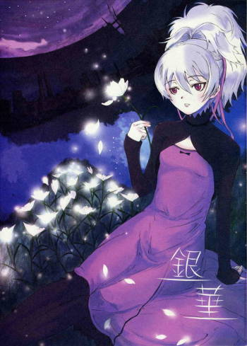(C72) [PaperCrown (Nagata Tsubasa)] Ginka [Silver Flower] (DARKER THAN BLACK -Kuro no Keiyakusha- [Darker Than Black]) cover