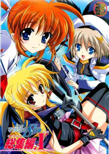 PLUM - Magical SEED Soushuuhen X [partially translated] [takehiro] (nanoha) cover