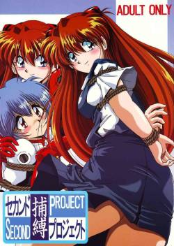 (CR36) [Thirty Saver Street 2D Shooting (Maki Hideto, Sawara Kazumitsu)] Second Hobaku Project (Neon Genesis Evangelion) [English]