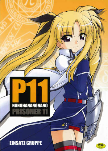 (C73) [EINSATZ GRUPPE (Charlie Nishinaka)] P11 PRISONER 11 NANOHANANONANO (Mahou Shoujo Lyrical Nanoha StrikerS) cover