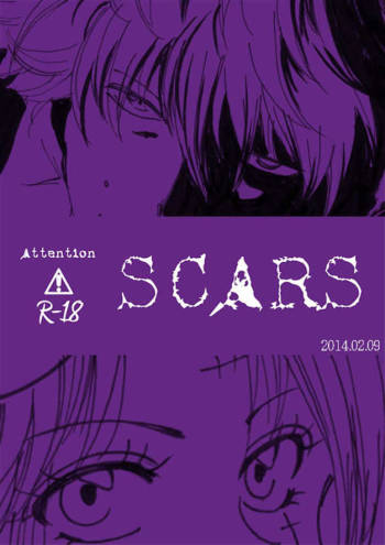 [A Joke is Hard!!! (Yanagi)] SCARS (Gintama) cover